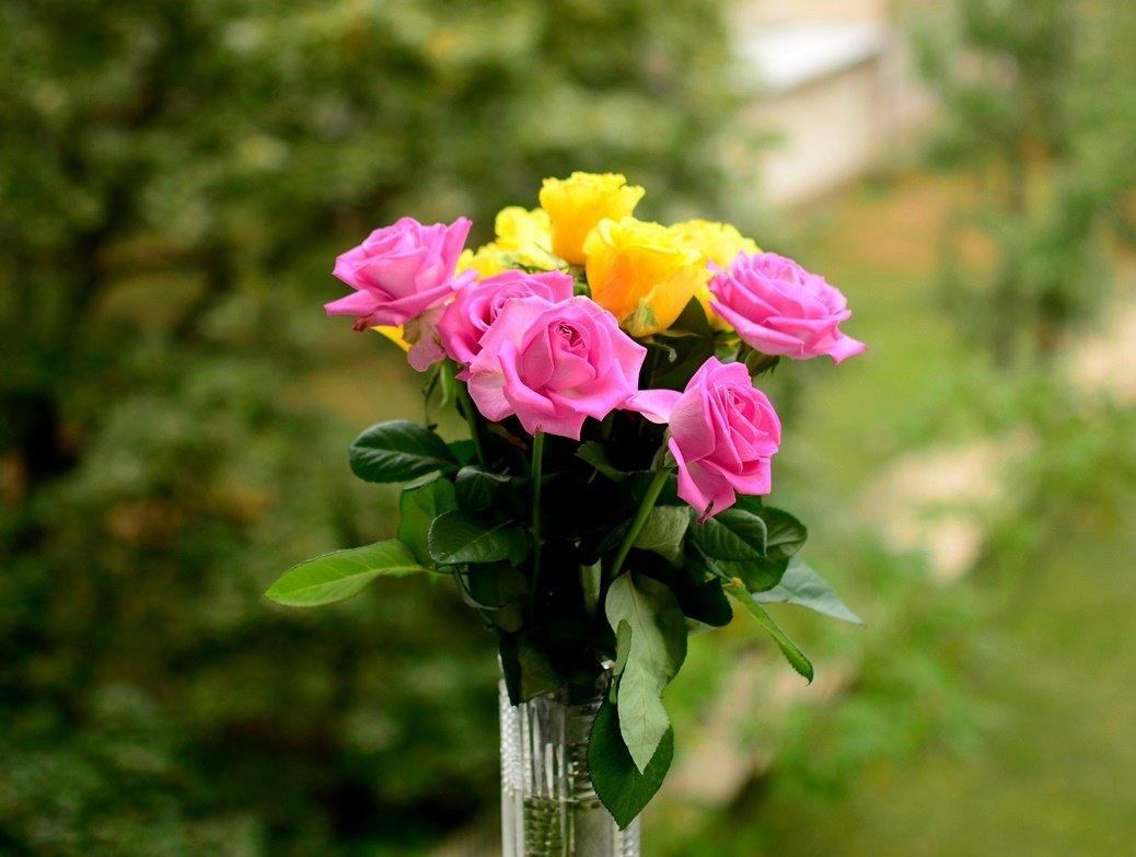 Цветы - петр