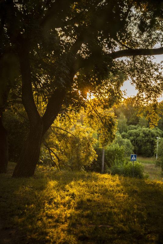 Краски солнца - Андрей Михайлин
