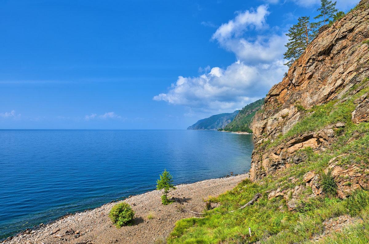 Маленькая лиственница на берегу Байкала - Виктор Никитин