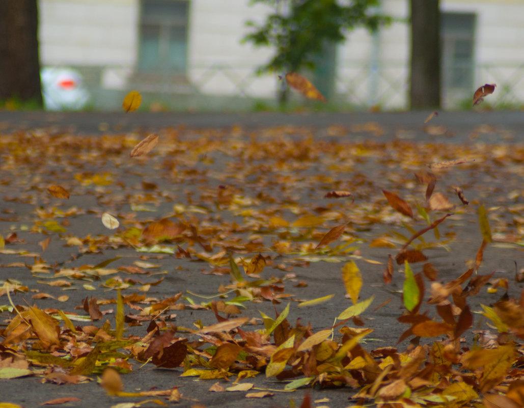 Гонит листья ветерок - Albina