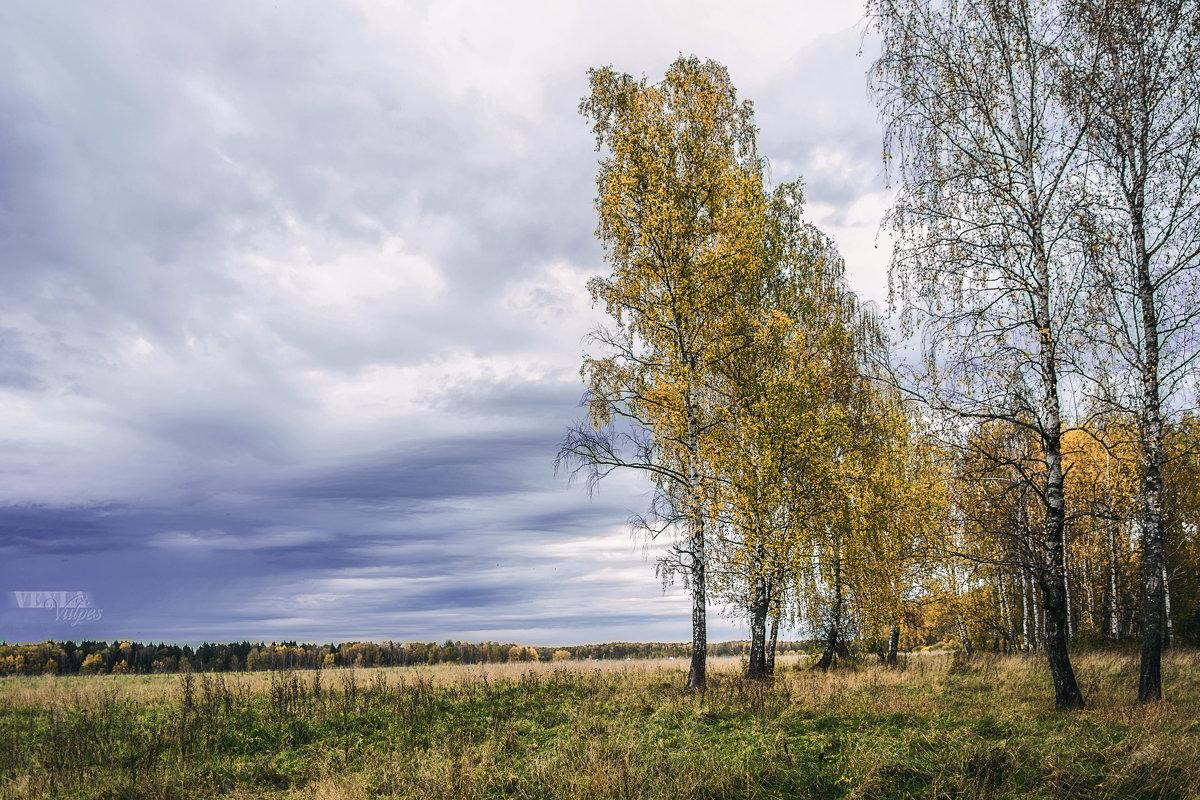 То же место. Осень - Veyla Vulpes