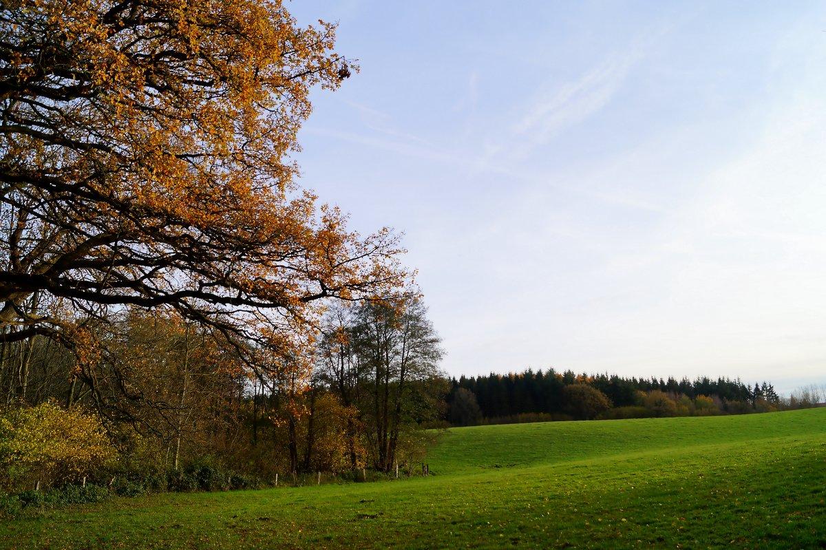 Осень на пригорке - Валерий Розенталь