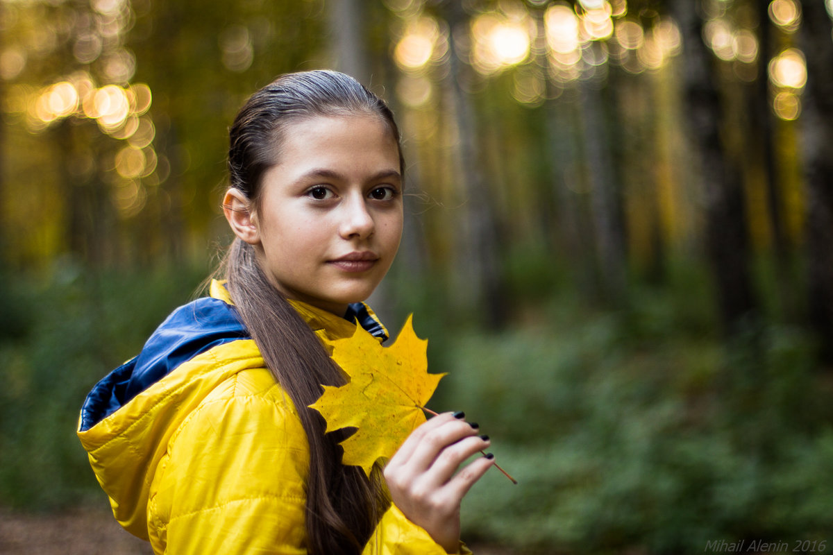 Осень - Михаил Аленин