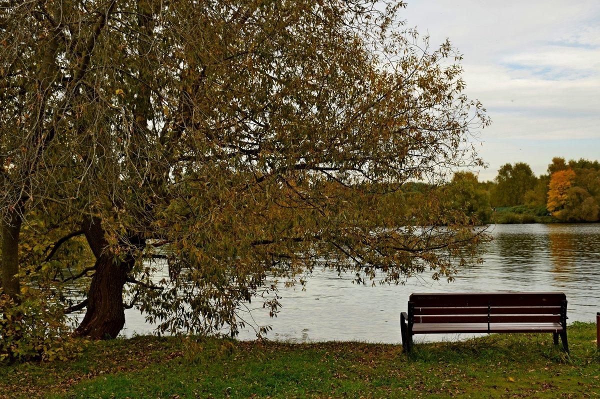 Московская осень. - vkosin2012 Косинова Валентина