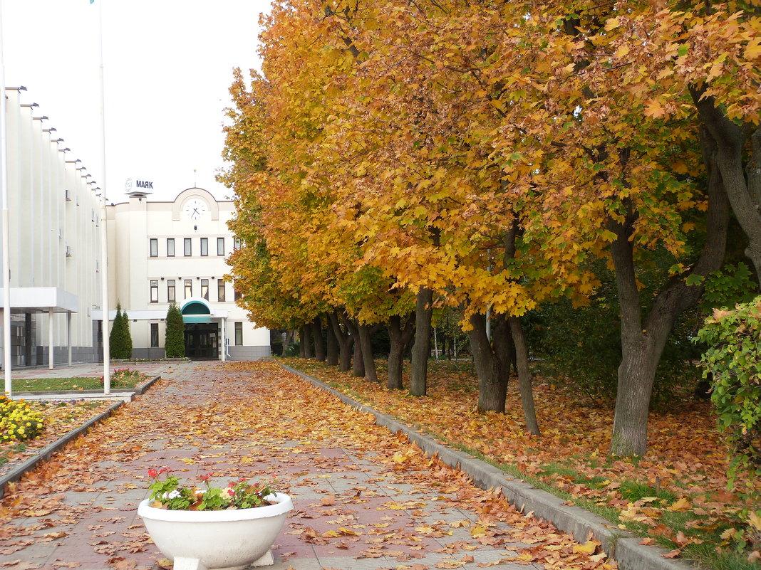 осень в городе - Инга Егорцева