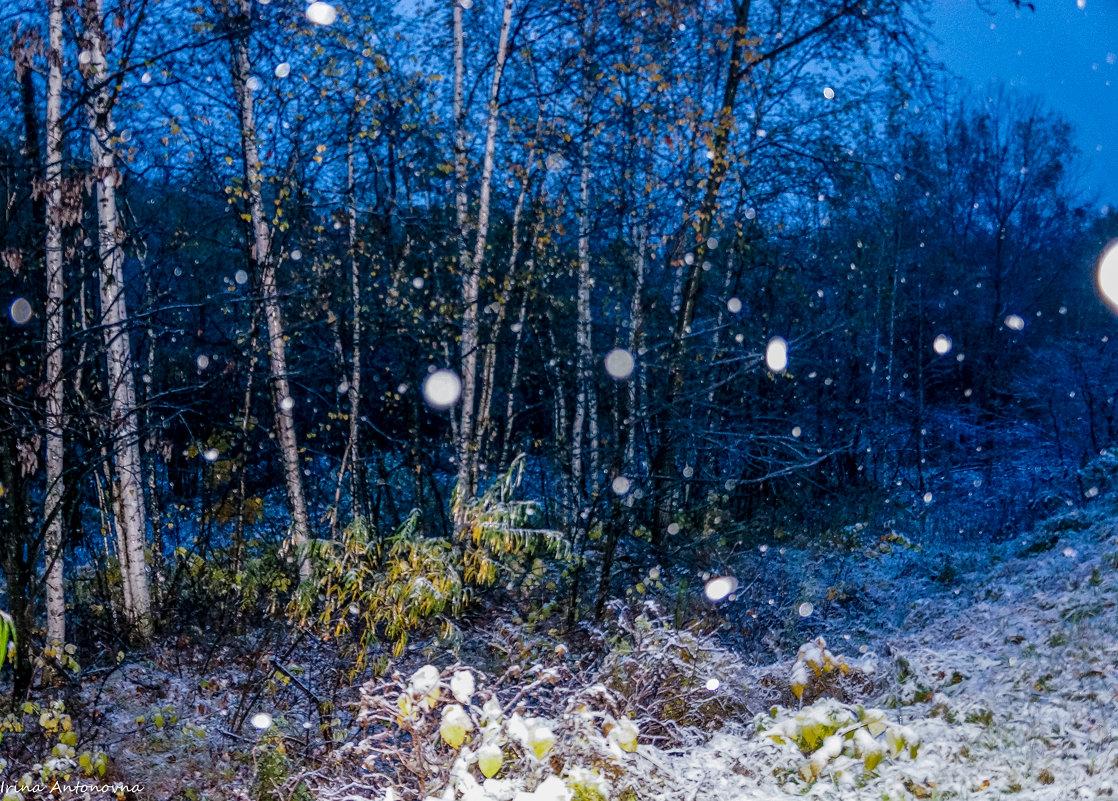 Первый октябрьский снег! - Ирина Антоновна