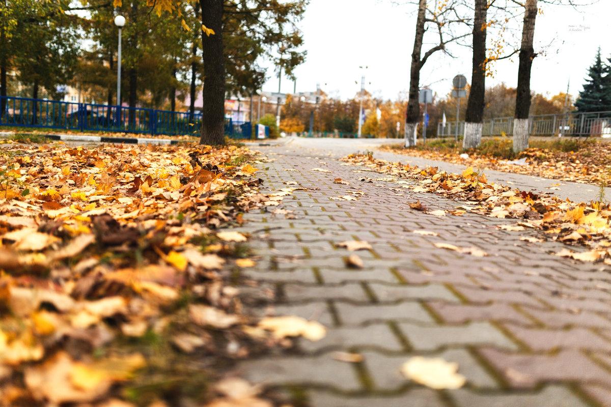дорога - Андрей