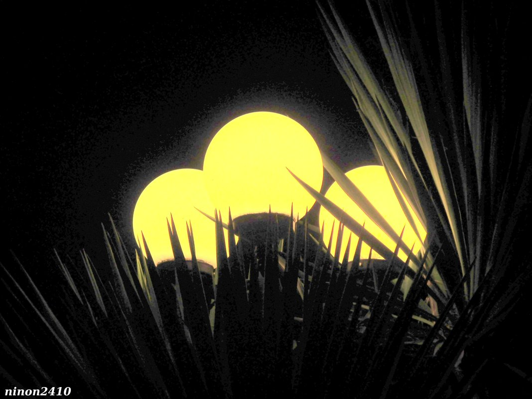 Вечерние фонари - Нина Бутко