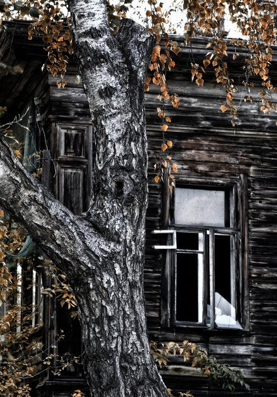 Осень жизни - Сергей Елесин