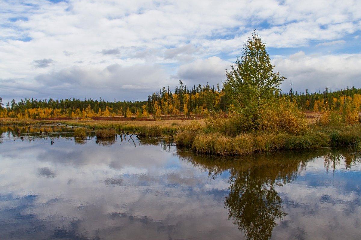 Речка Бобровка - Дмитрий Сиялов