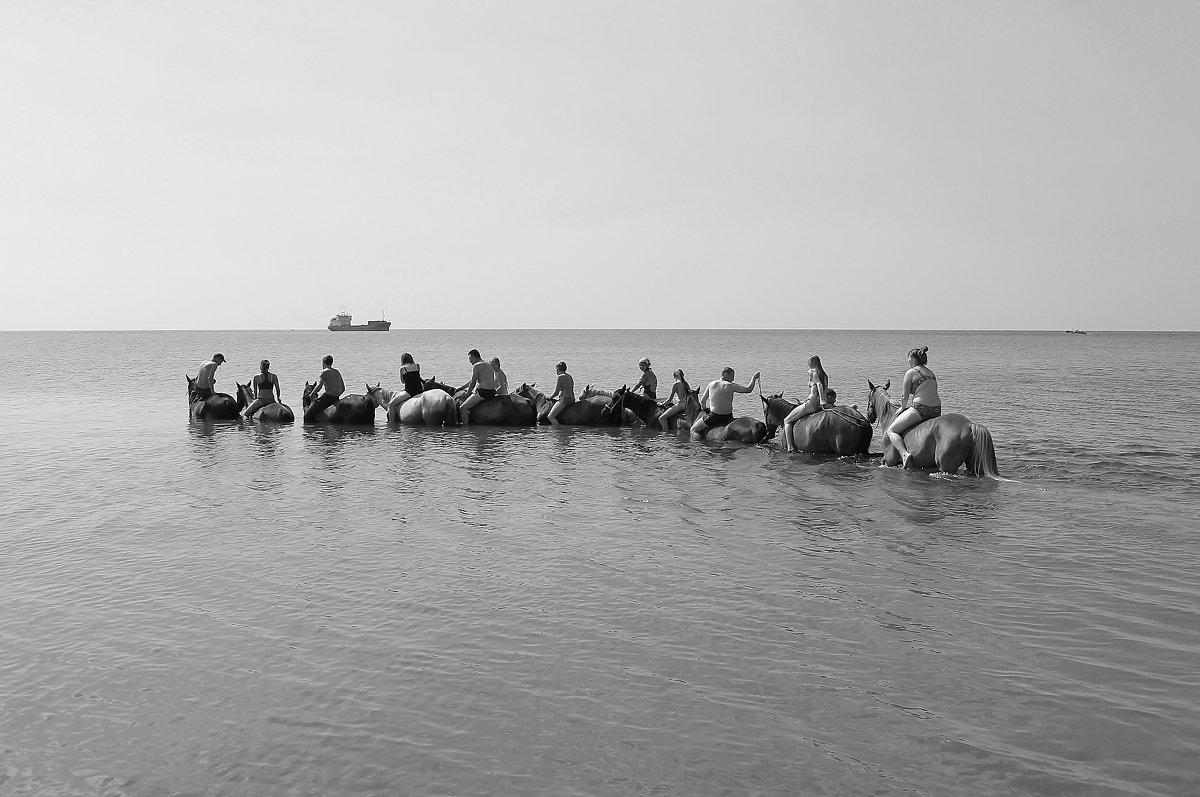 Купание в море на лошадях - Марина Marina