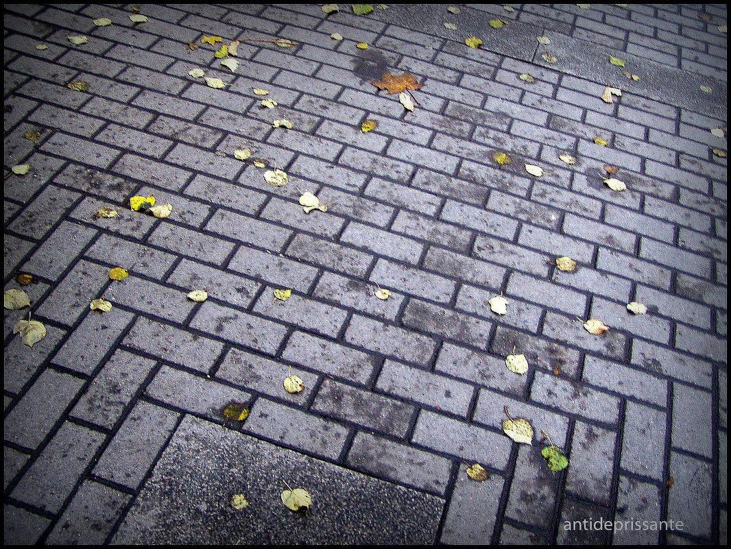 Листья желтые - vadim