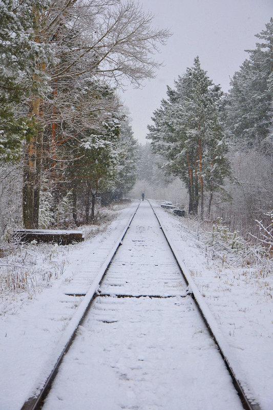 Вот и первый снег - Алексей http://fotokto.ru/id148151Морозов