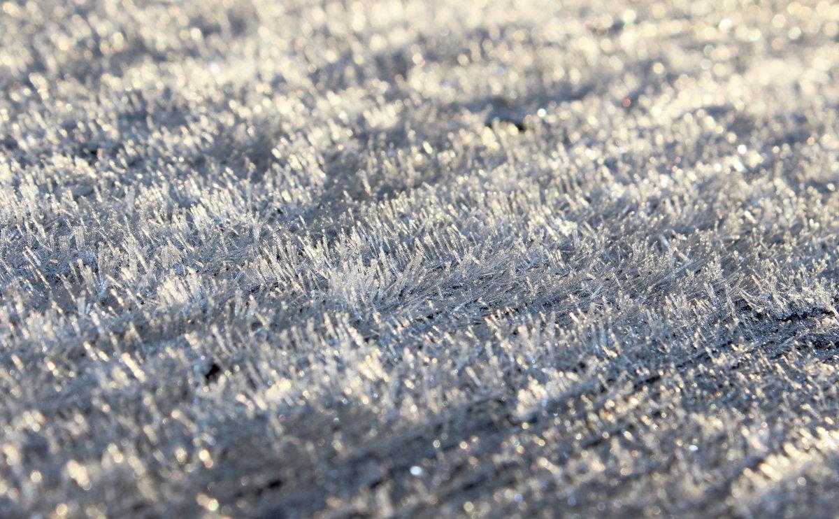 Первый заморозок - Андрей Скорняков
