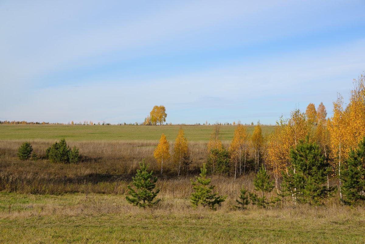 Осень - Евгений Ломко