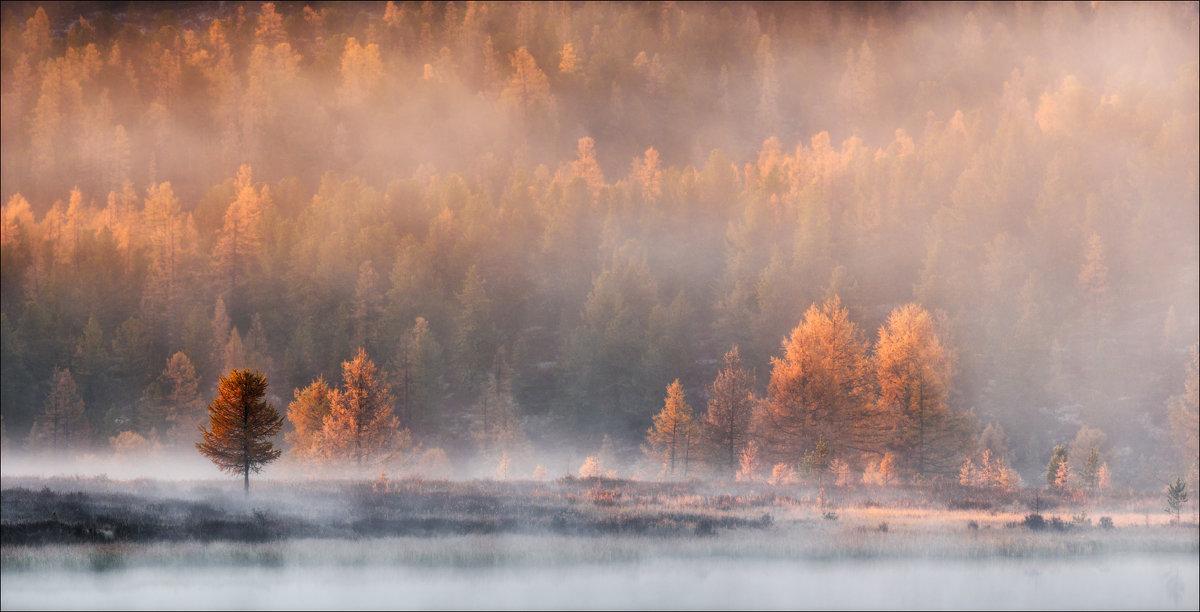 Пробуждение - Влад Соколовский