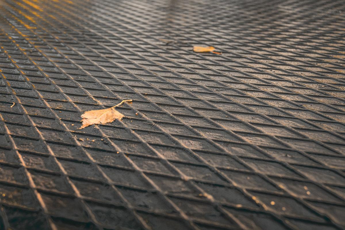 После дождя - Олег Фиедориенко