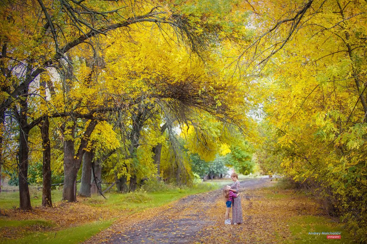 Осенний день -счастливый день! - Андрей Молчанов