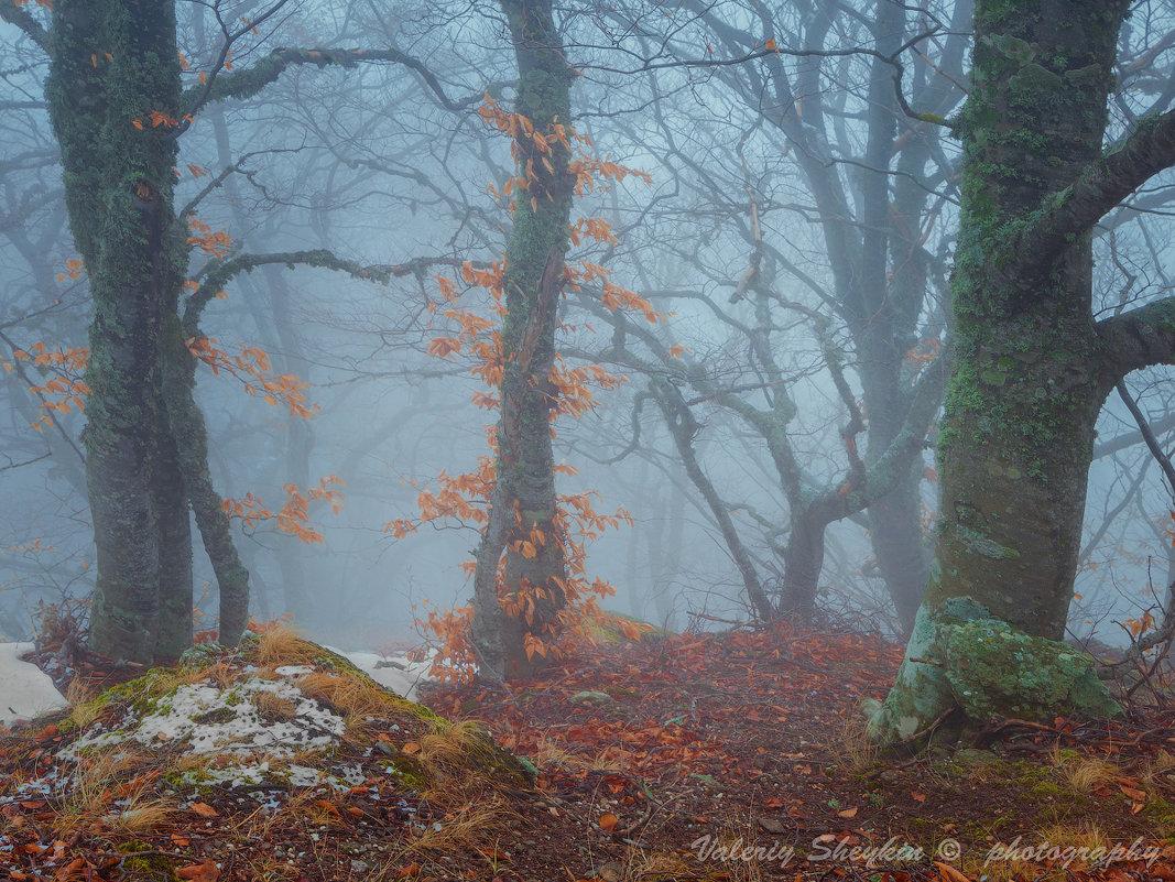 ...и краски осени полны - Валерий Шейкин