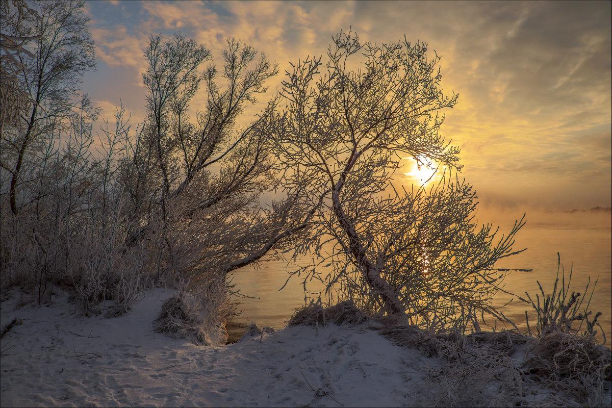 Январь 2016 - Юрий Клишин