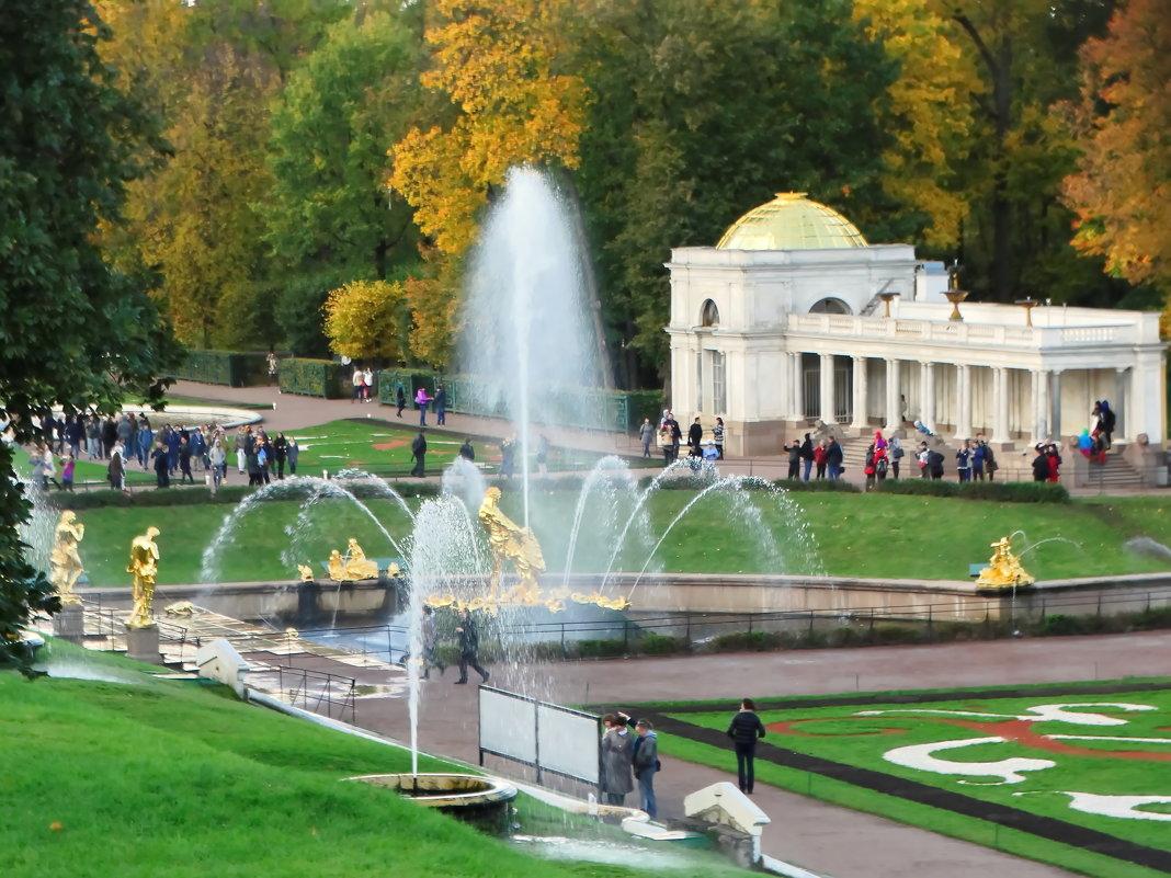 Вид на большой фонтан с Самсоном и его помощником львом. - Владимир Гилясев