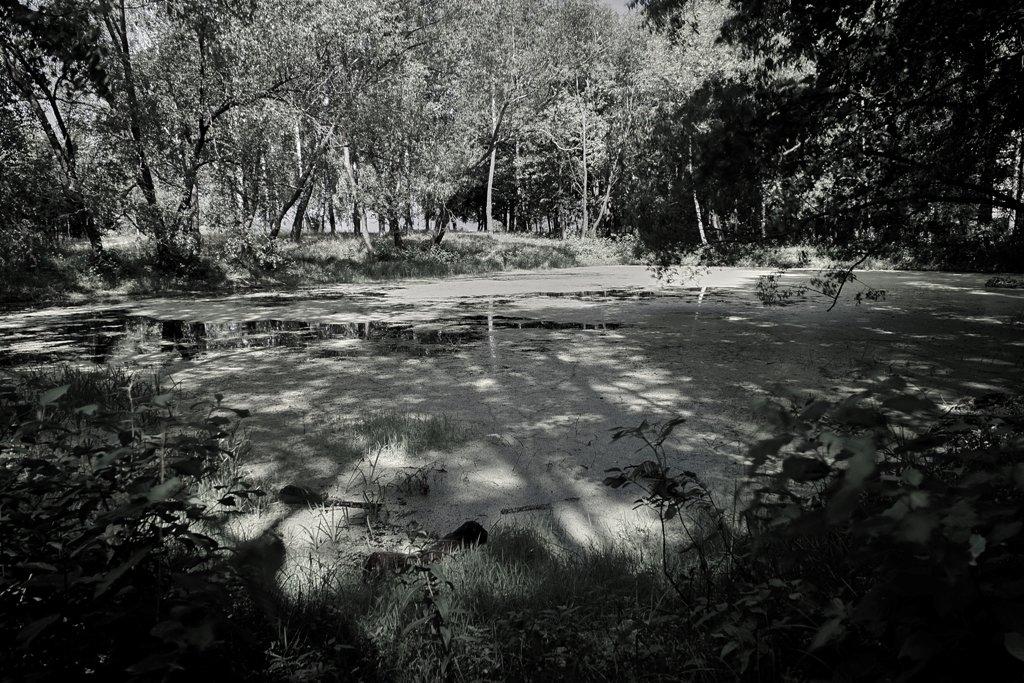 озеро - Виктор