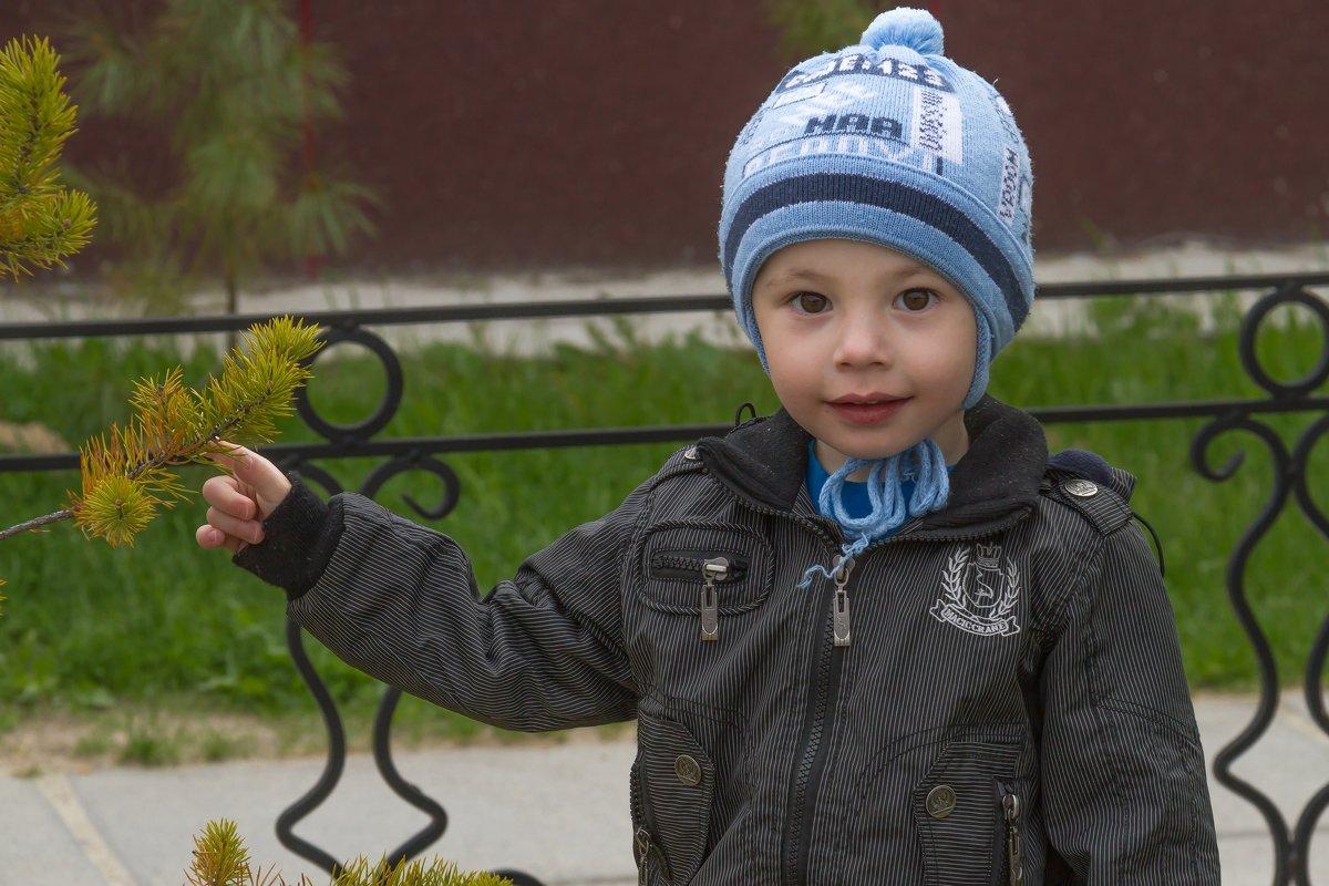 Портрет с веточкой - Дмитрий Сиялов