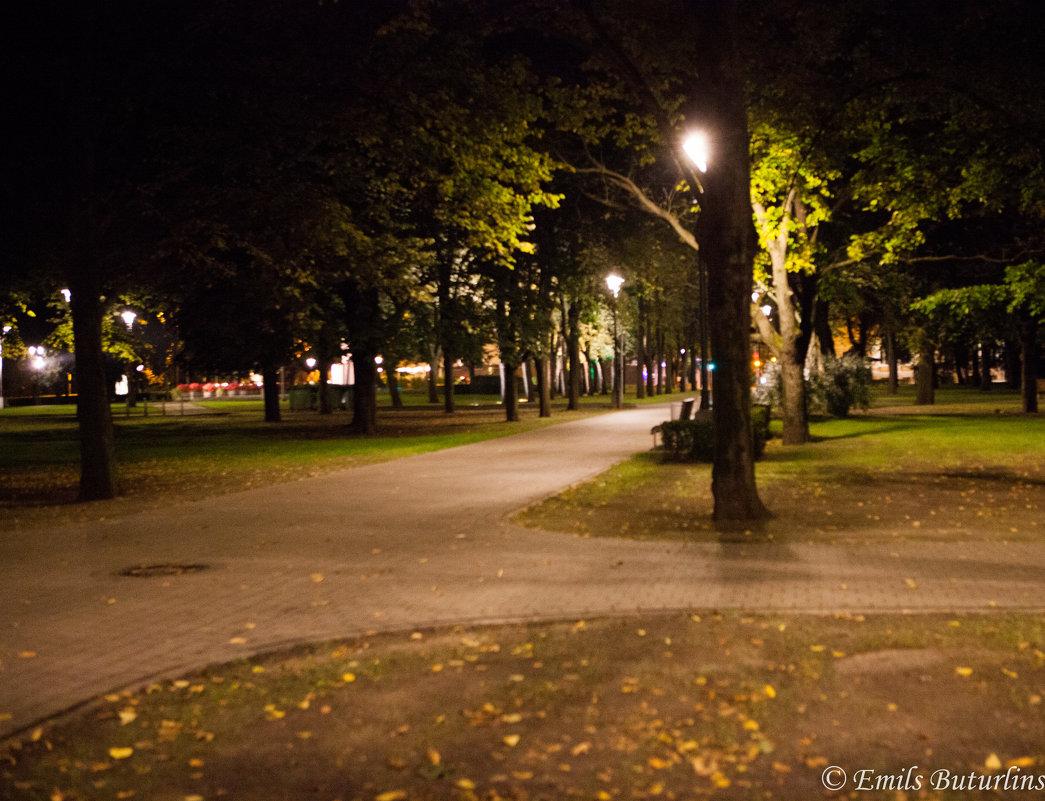 Уличный фонарь - Emil Buturlin