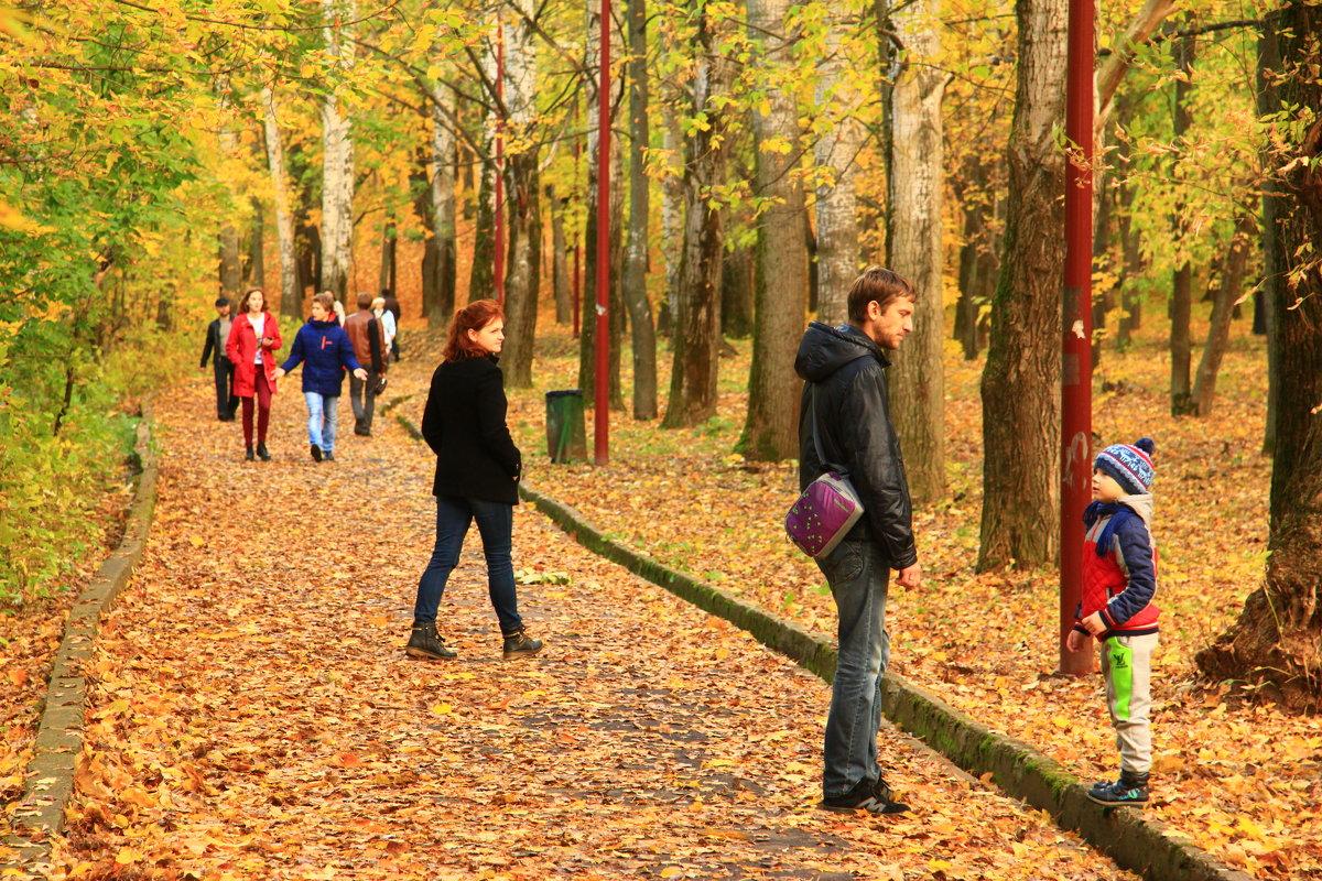 Осенние прогулки - Владимир Андреевич Ульянов