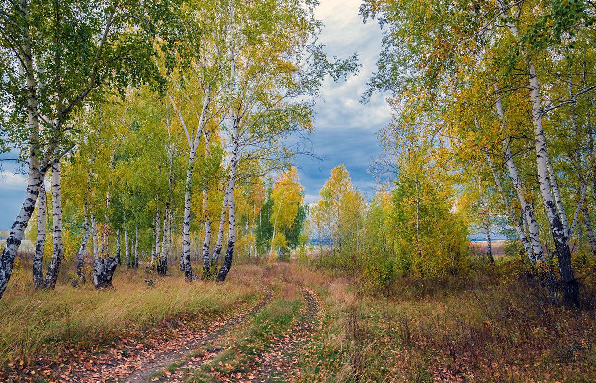 Дорога в осень - Любовь Потеряхина
