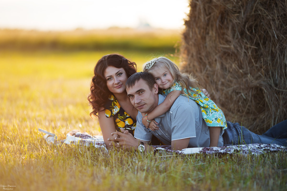 семья - Татьяна Степанова