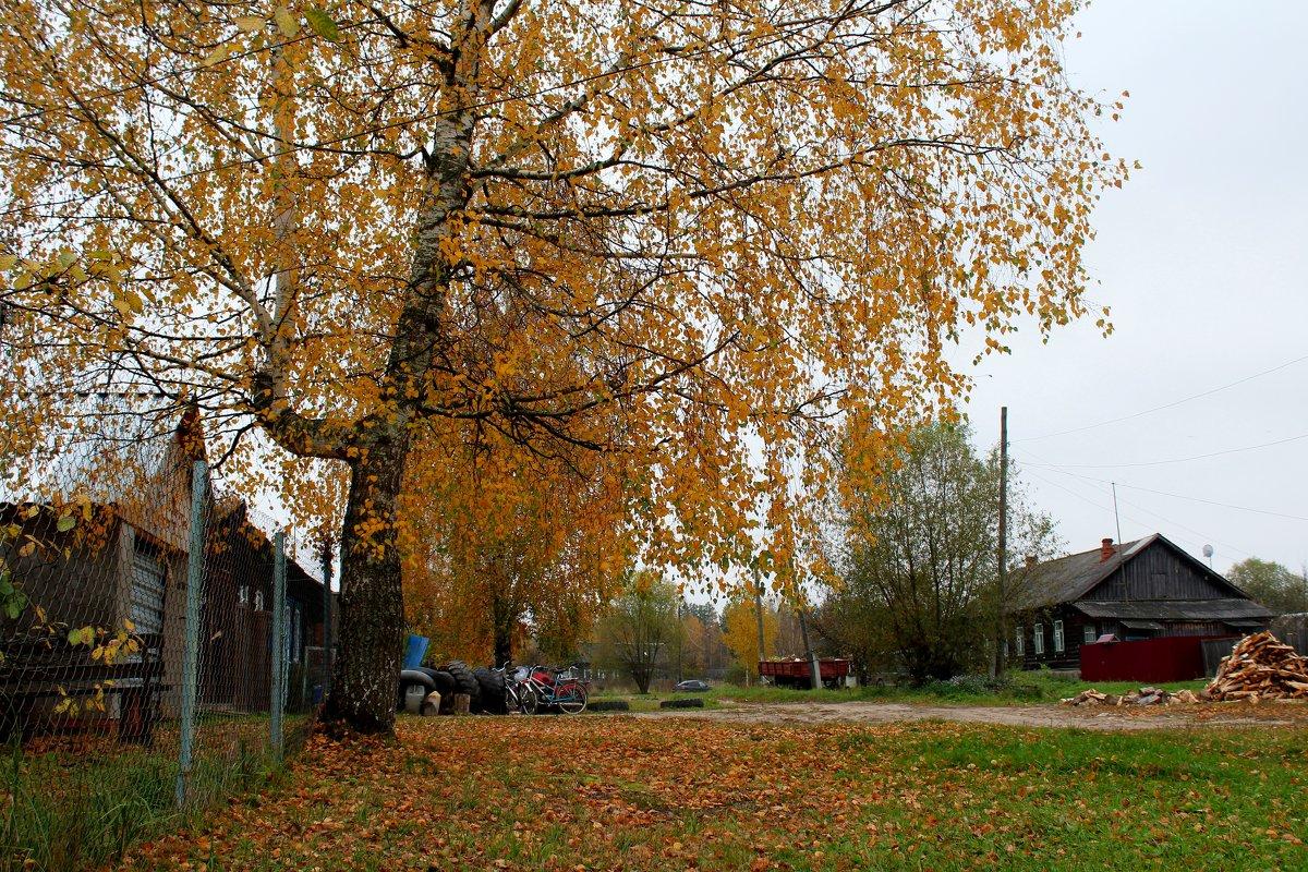 Ушли в осень - Катя Бокова