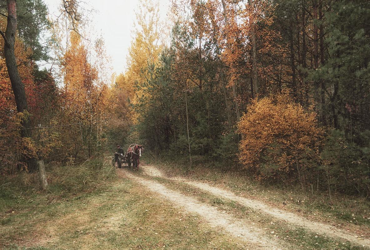 В осеннем лесу - Марина