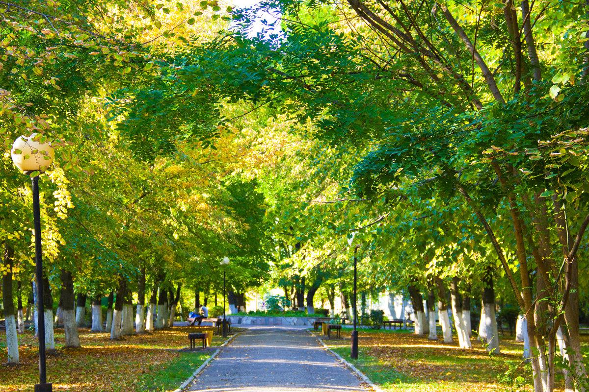 осень в парке - Oksana Verkhoglyad