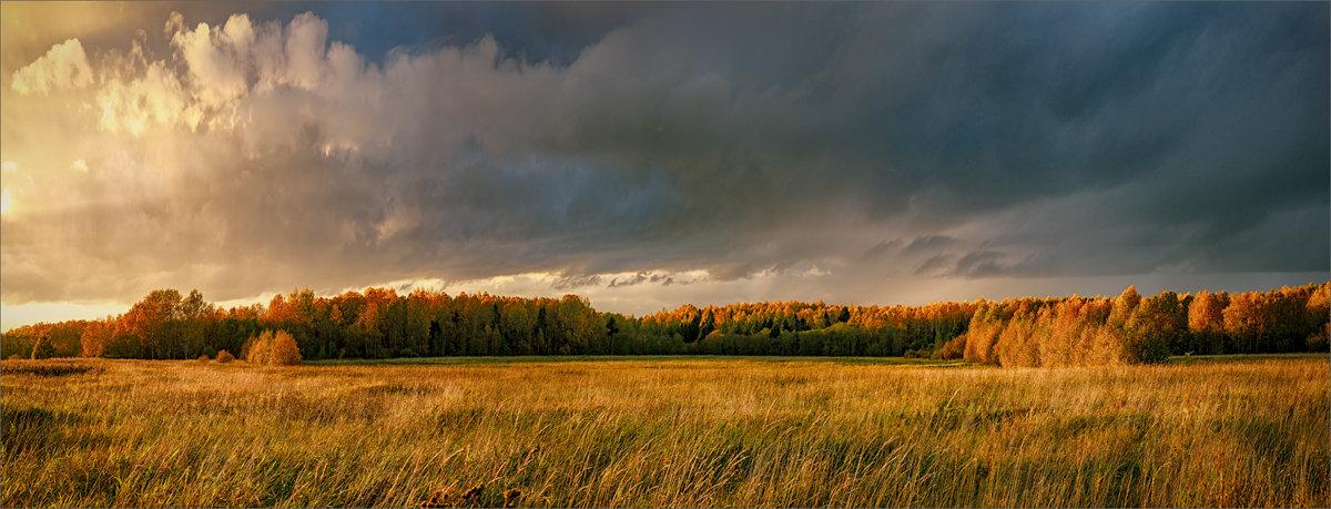 Я так люблю осенний лес - над ним сияние небес... © - Александр Никитинский