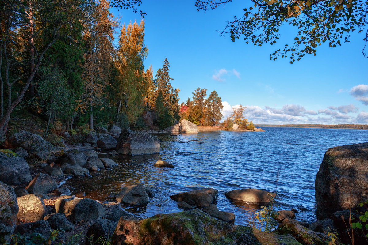 Осень в Монрепо - Евгений Никифоров