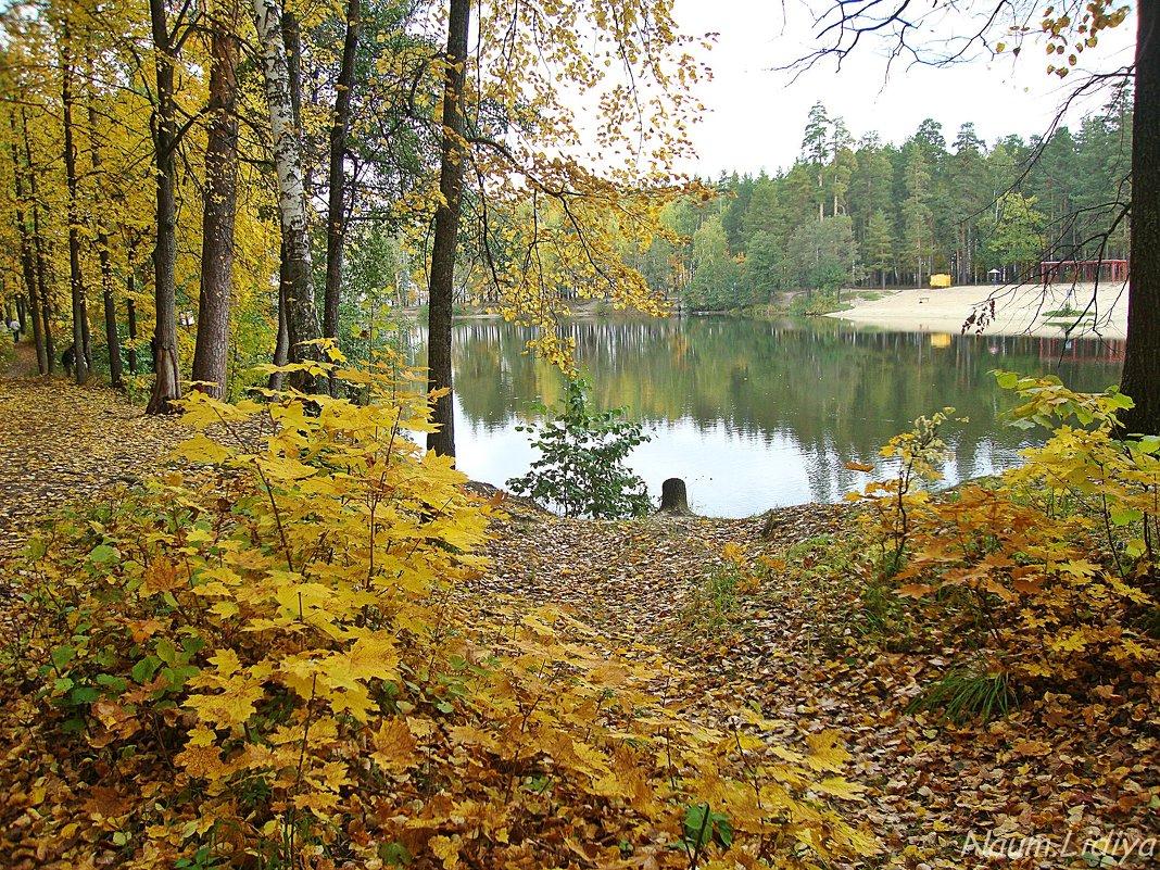 Осень в моем городе - Лидия (naum.lidiya)