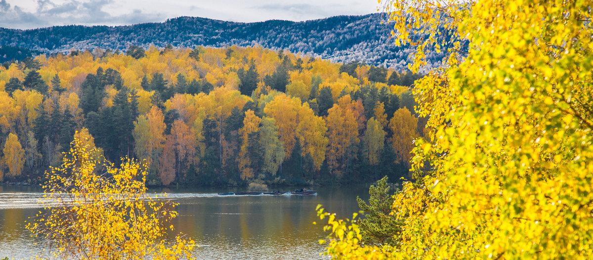 Золотая осень... - игорь козельцев