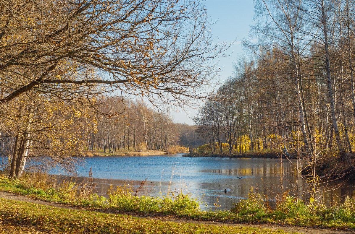 Прозрачная осень 2 - Виталий