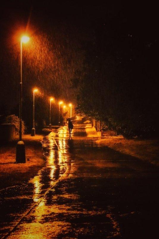 Осенние дожди. - Svetlana Sneg