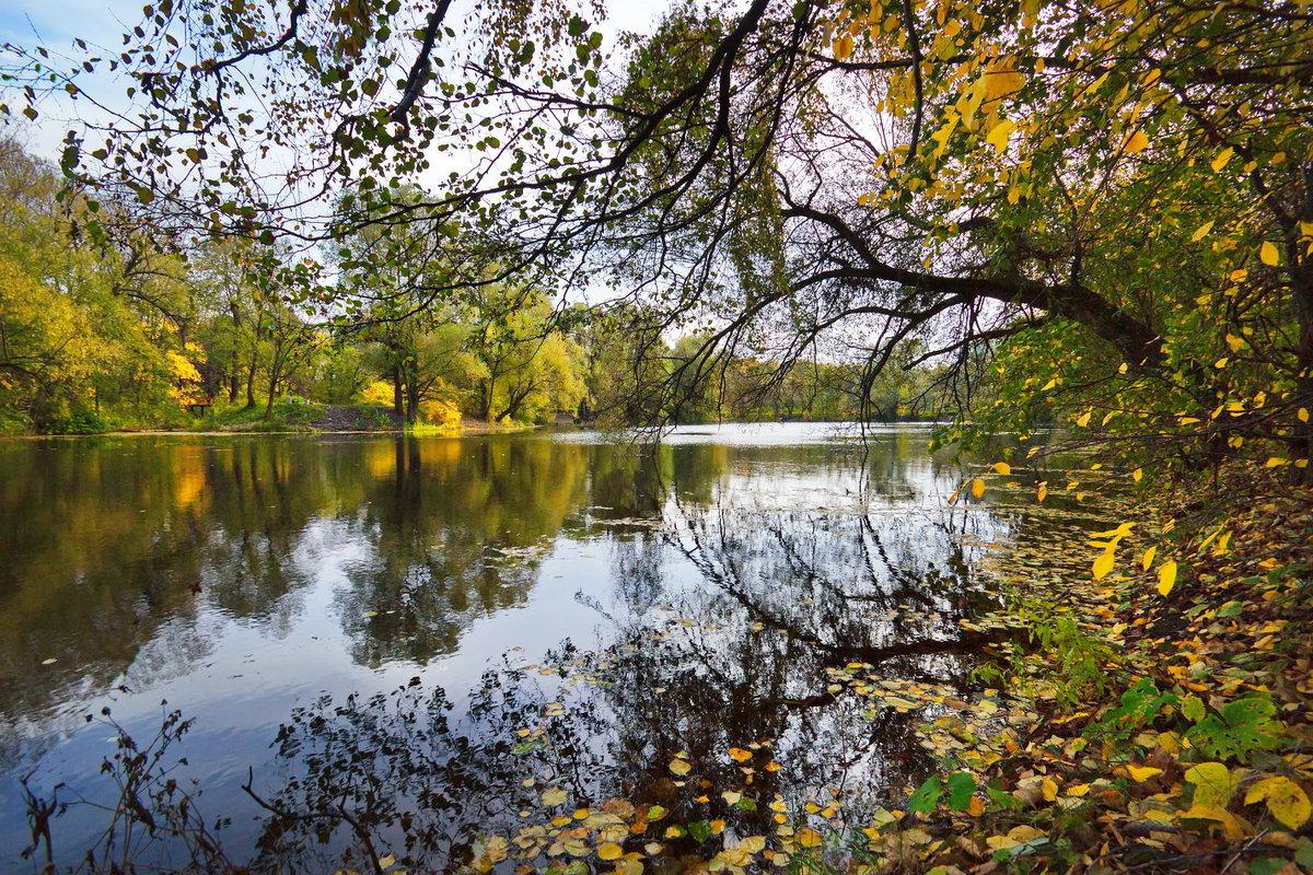 Осень - Юрий Кольцов