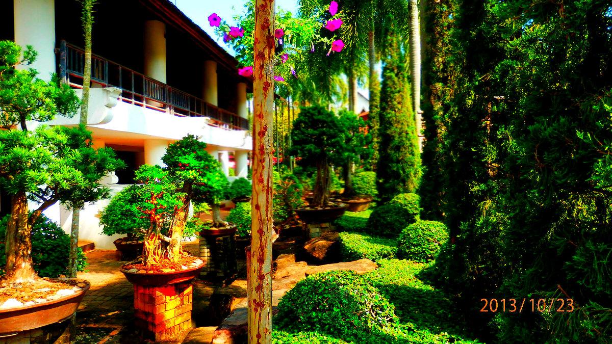 райский сад - Таня
