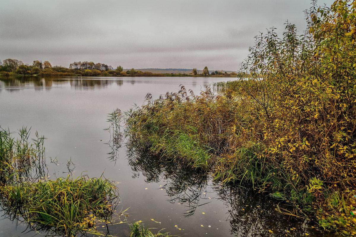 Осень и ещё раз осень - Андрей Дворников