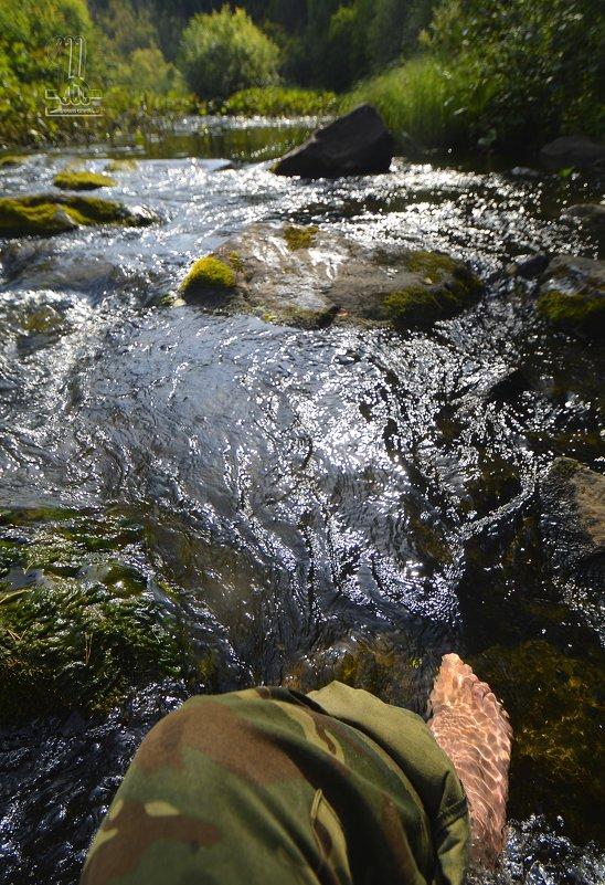 перейти реку... однажды - Сергей Шаврин