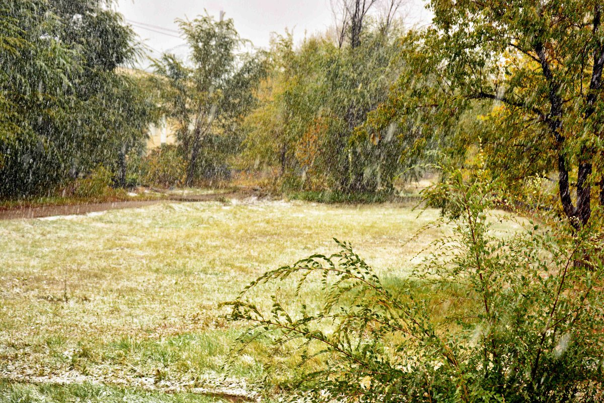 Первый снег! - Юрий Фёдоров
