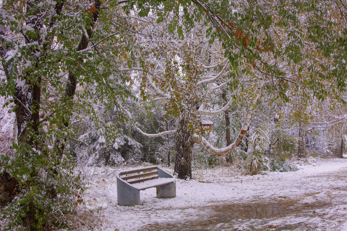 Первый снег---02 - Владимир Холодный