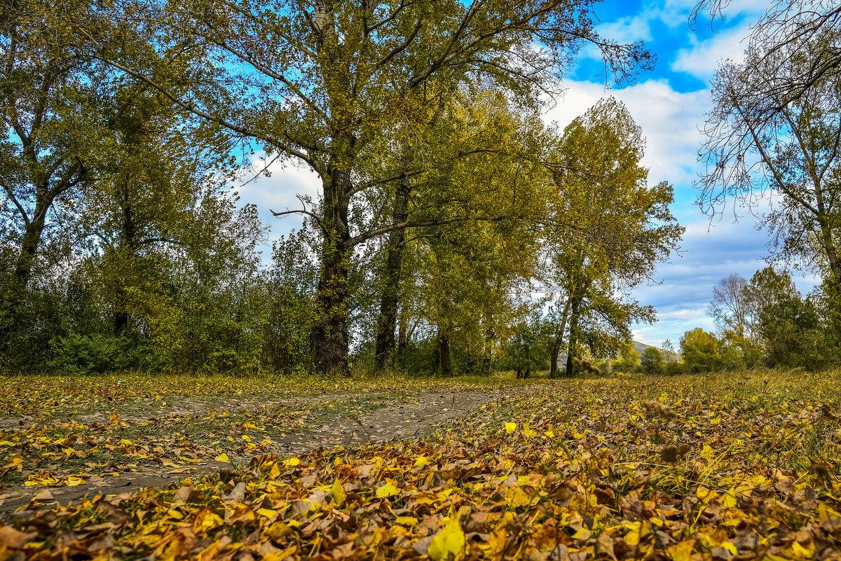 Осень - юрий Амосов