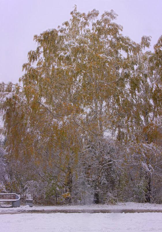 Первый снег---03 - Владимир Холодный