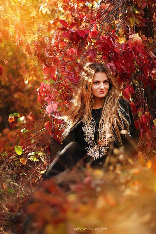 девушка в лесу - Елена Колодяжная