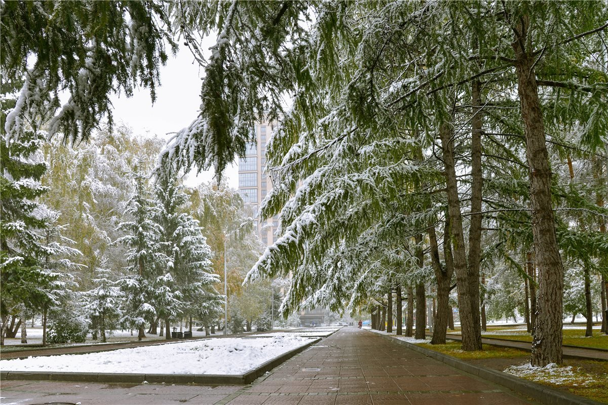 А снег идет и идет - cfysx